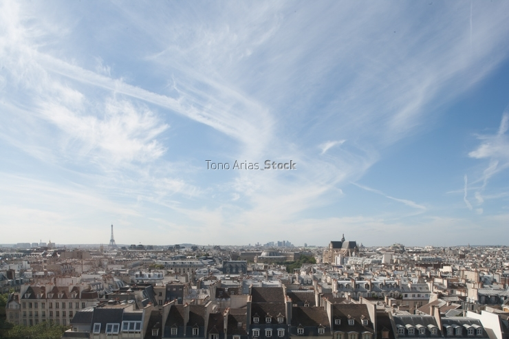 France, Ile de France, Paris, elevated view